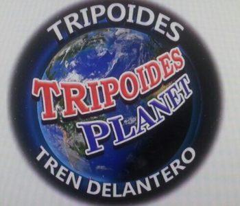 logo tripoides